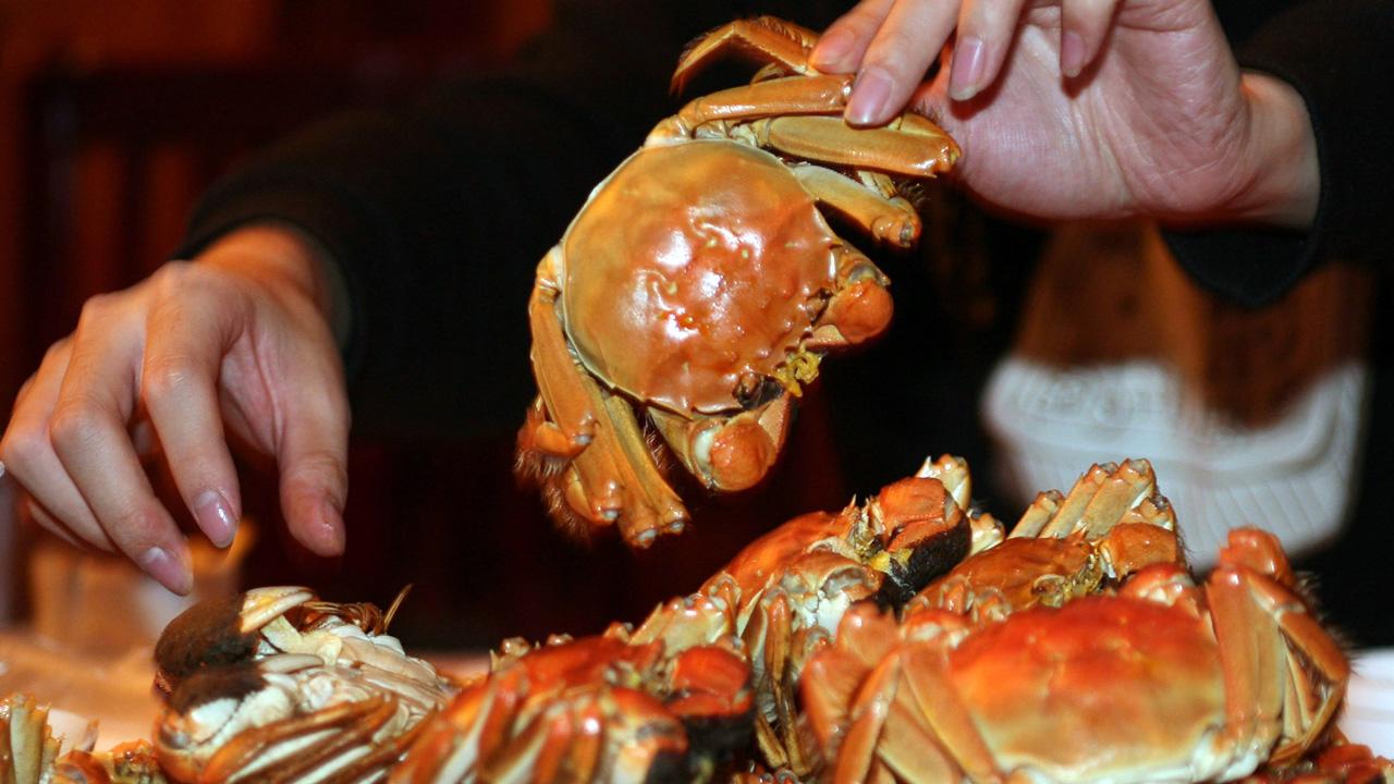 crabs_1531747296510.jpg