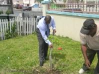 GECCU Tree Planting