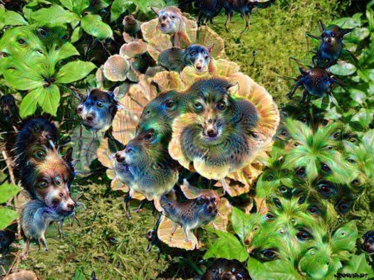 Turkey Tail Mushrooms deep dream