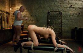 BDSM-pinces-a-linge-epingles-corps-2