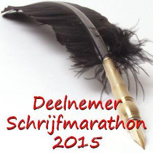 Door naar ronde acht in de EWA schrijfmarathon 2015: De ladder
