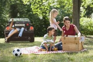 700-dogging-picnic