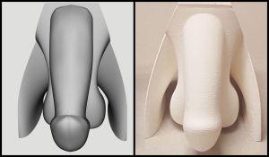 3D geprinte geslachtsorganen voor seksuele opvoeding van blinden