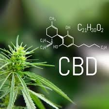 Everything you need to know about CBD in lube