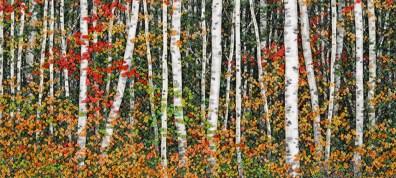 Brightly Colored Birch at Van Winkle Lake