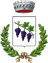 Bando di Concorso per 13 NCC nel Comune di Novoli (LE)