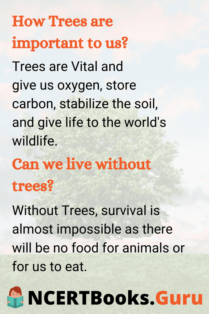 Essay on Trees