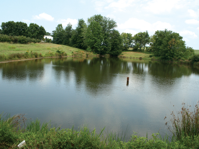 Farm Pond Not Holding Water