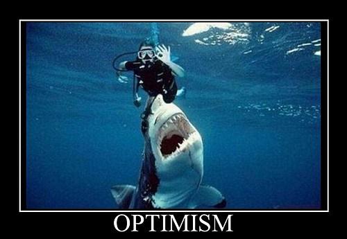 optimism-shark