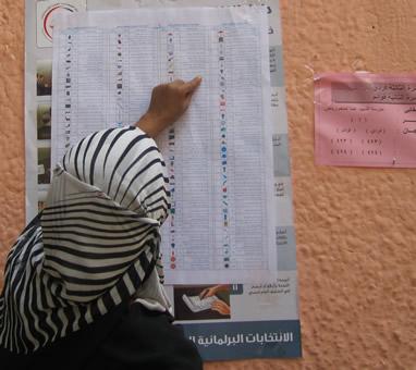 Checking sample ballot
