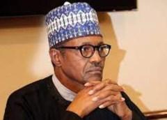 Drop Your Partisanship In Nigeria's Interest, Macaulay Urges Buhari