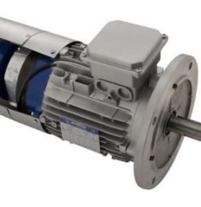 Motori elettrici per carriponte e sollevamento