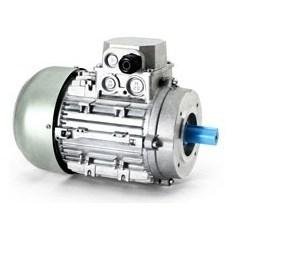 Motori elettrici trifase IE1