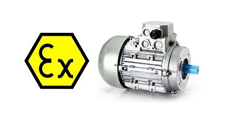 motori elettrici atex 2 zona 22