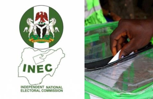 We'll use Bayelsa, Kogi guber polls to correct mistakes of 2019 general elections – Electoral Institute