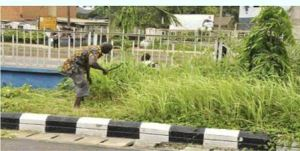 Traffic offenders made to weed, clear drainage in Edo