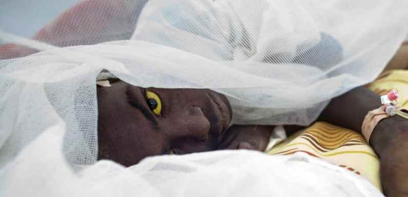 Govt clarifies Yellow fever status in Ebonyi, number of deaths