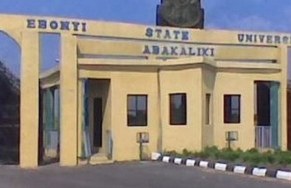 Ebonyi State University VC denies resignation, accepts owing lecturers salaries