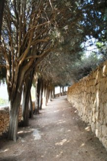 garden_path_02