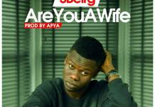 SBeirg - Are You A Wife (Pro By Apya)