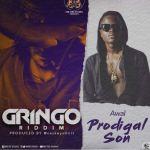 Awal – Prodigal Son (Gringo Riddim) (Prod By Caskeysonit)