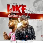 EnnWai – Like You Ft Gasmilla (Prod By Mr.Herry)