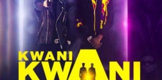 Tic ft Kuami Eugene - Kwani Kwani (P2)