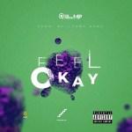 Quamina Mp – Feel Okay (Prod by Yung D3mz)