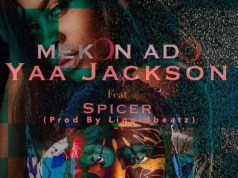 Yaa Jackson – Mekon Ado ft. Spicer (Prod. by Liquid Beatz)