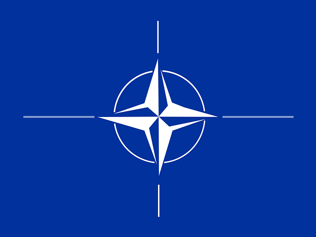 nato-26848_640.png