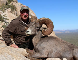 Desert Bighorn Sheep - Mexico