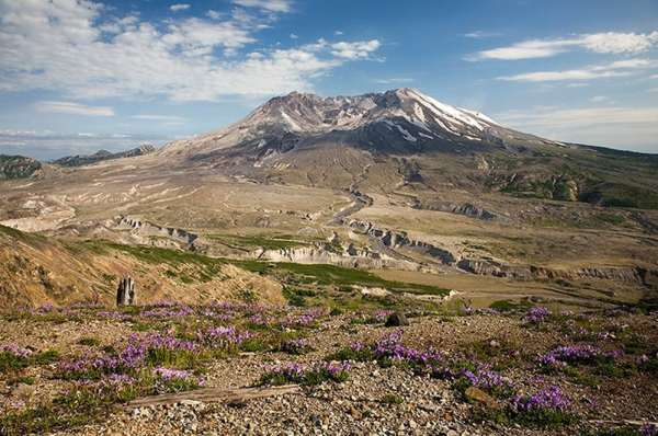 Wild: photo of Pumice Plain alongside Mount Saint Helens.