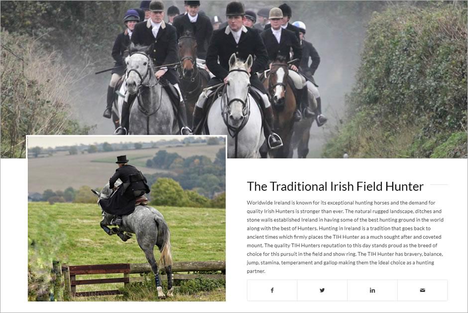 Equestrian web deseign and web development