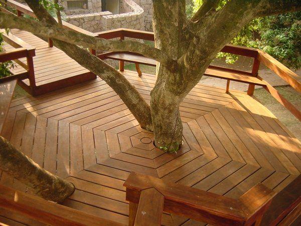 wood deck around the tree