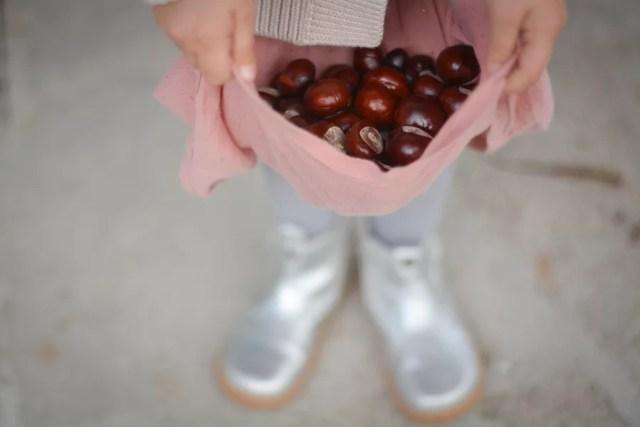 dziecko trzyma stertę kasztanó
