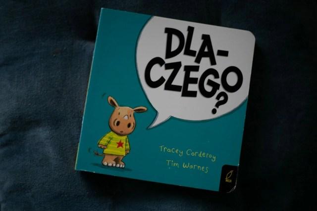 kartonowe książki dla najmłodszych