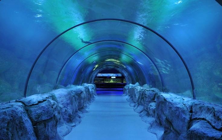 Keçiören_sea World Aquarium