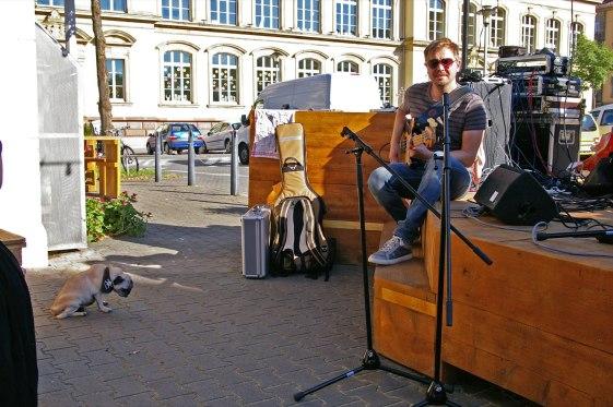 Ganz zufrieden mit dem Sound schien der vierbeinige Fan noch nicht | Foto: Neckarstadtblog