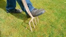 dealing with soil compaction