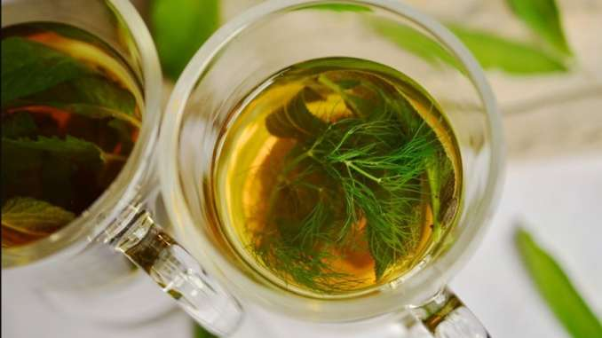 medicinal herbal leaves to breathe better