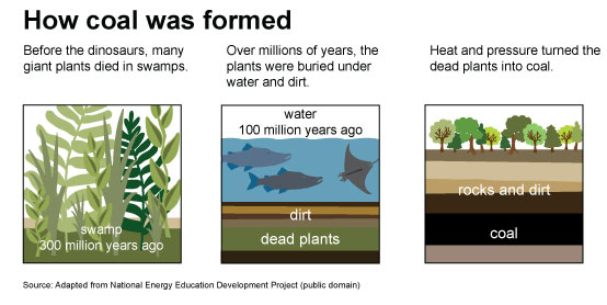 How Coal is Formed Graphic