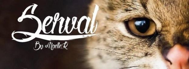 Serval (modern)