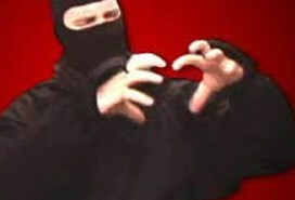 Ask a Ninja