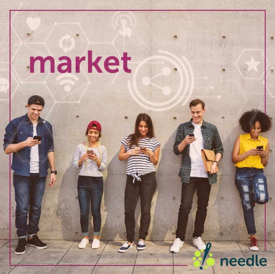 Social Influencer Marketing with Needle