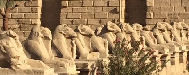 photo of a row of sphinxes