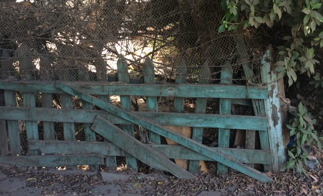 photo of an old worn fence