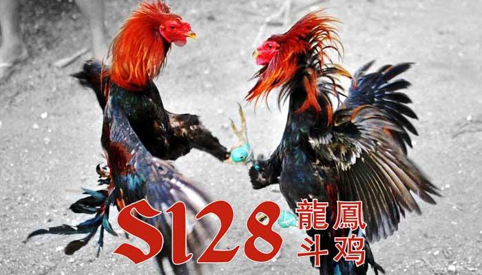 Link Alternatif S128