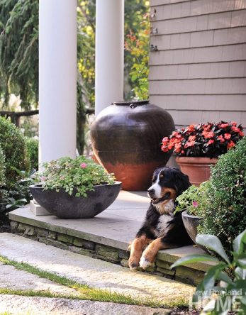 The homeowners' Bernese Mountain dog soaks up the sun amid a medley of flower-filled containers, each with its own personality to enhance visual interest.