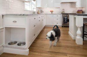 kitchen dog bowl storage