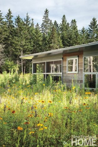 Elliot + Elliot Architecture wildflower